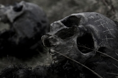 Plague Skulls (Viking: The Darkest Day)