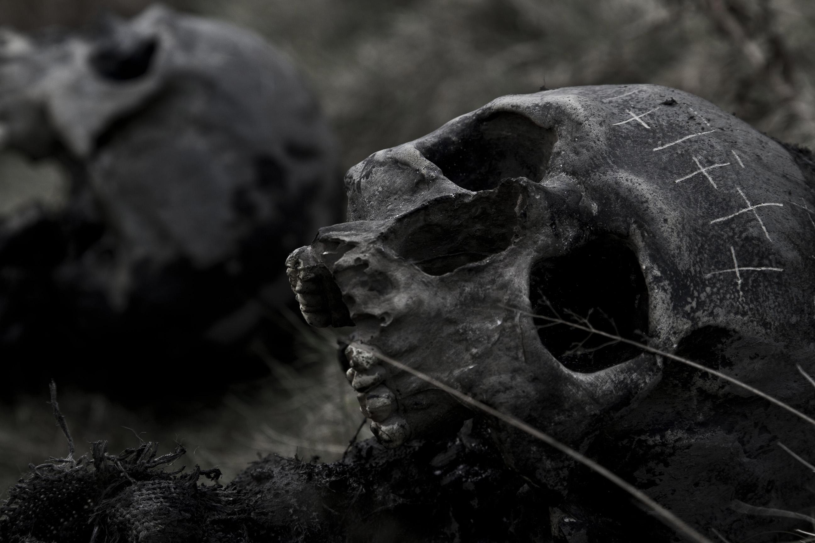 Plague Skulls (Viking: The Darkest Day)